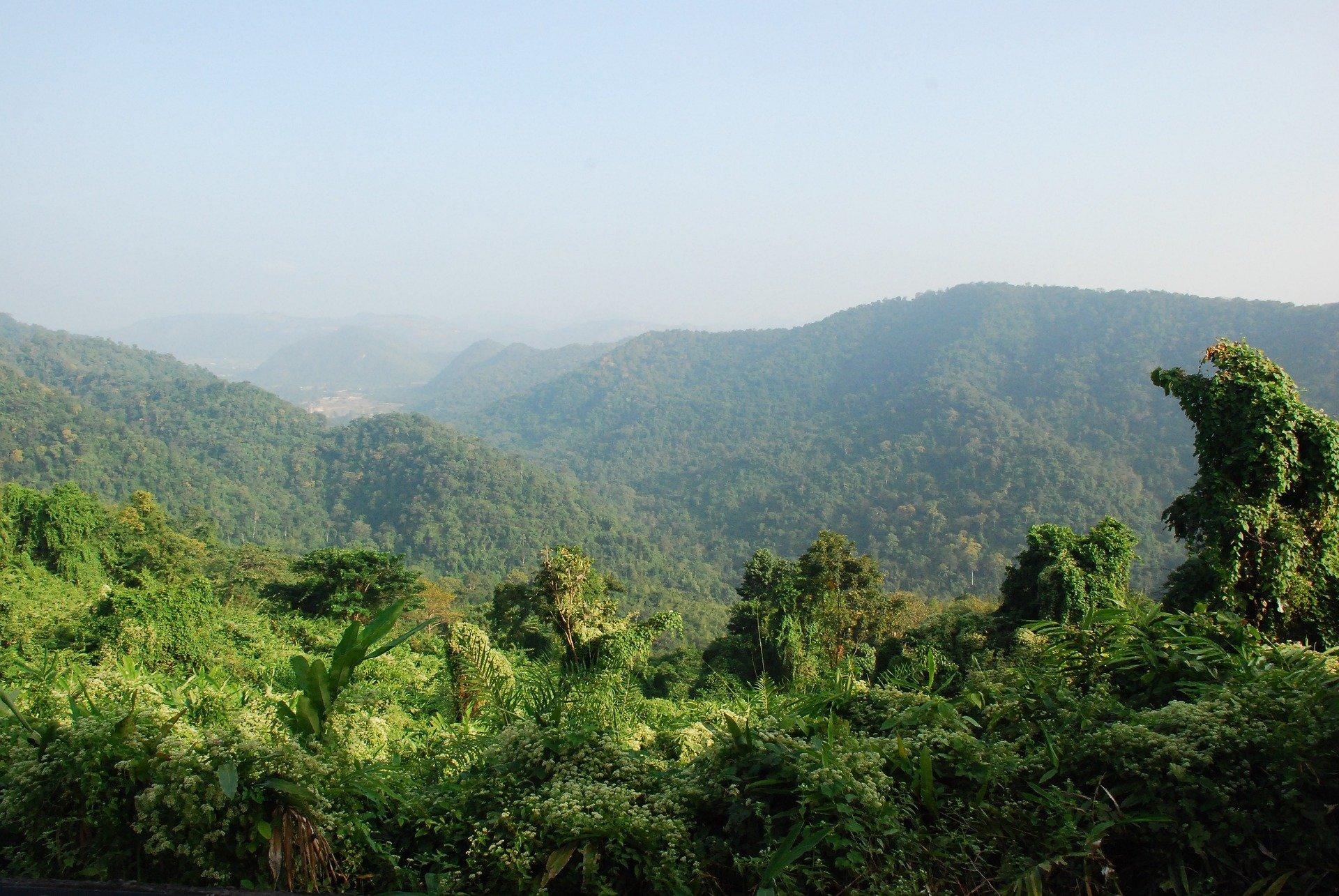 From Prachinburi you can access Khao Yai National Park