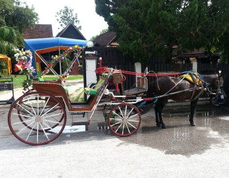 Horse drawn carriage in Lampang