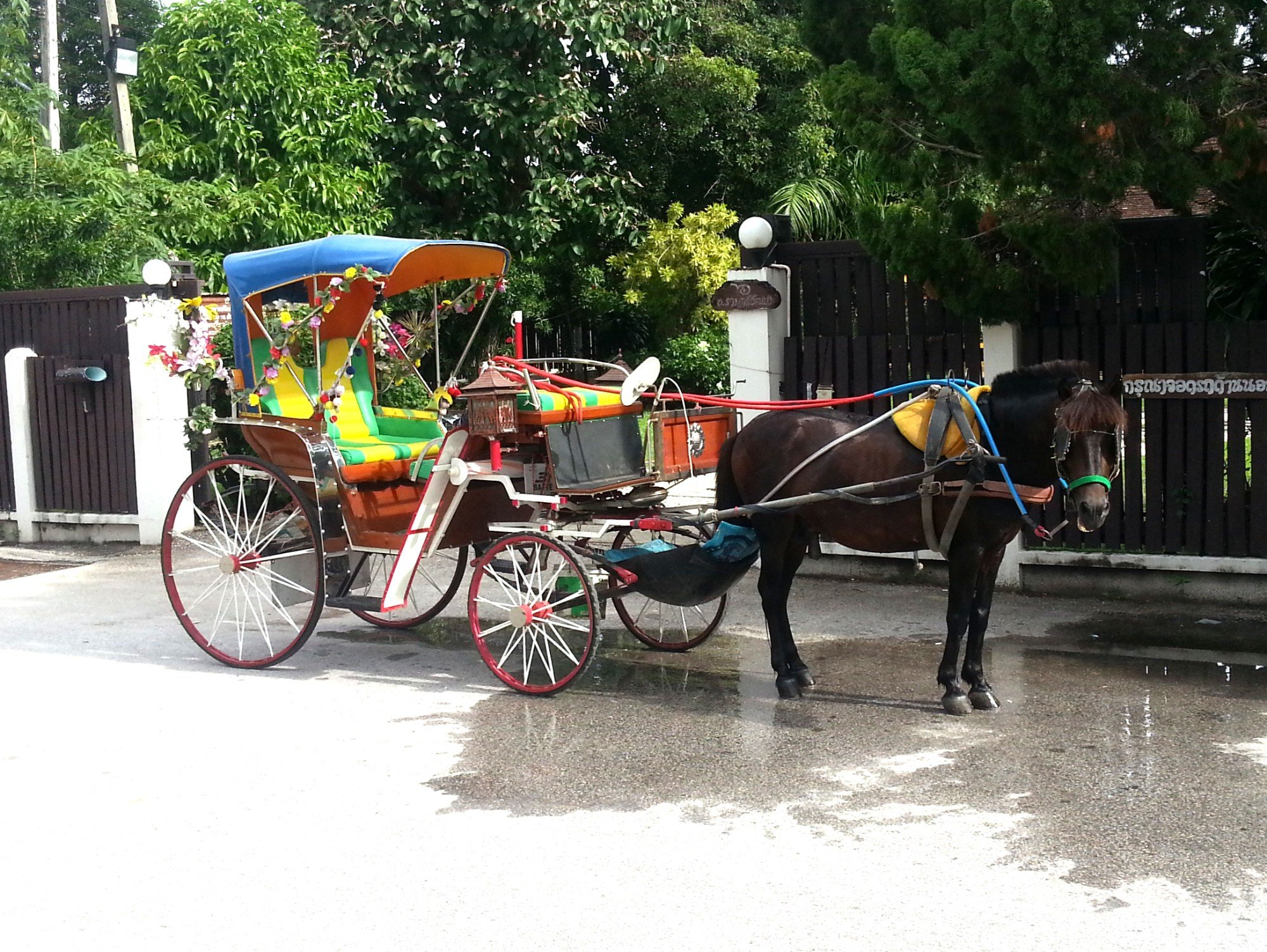 Lampang is famous for its horse drawn carriages